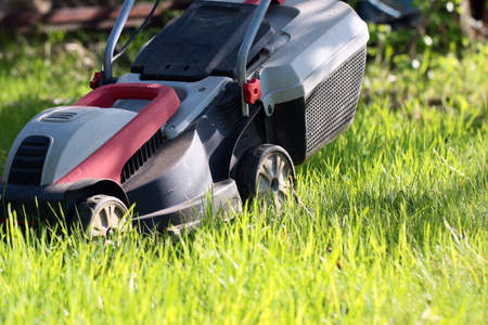 Beautiful fresh green grass on lawn and electric lawn mower Stock Photo