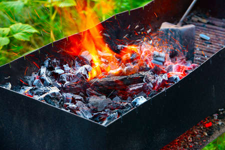 Charcoal and the open flame of fire in the wild Stock Photo