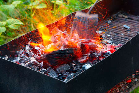 metal grate: Charcoal and the open flame of fire in the wild Stock Photo