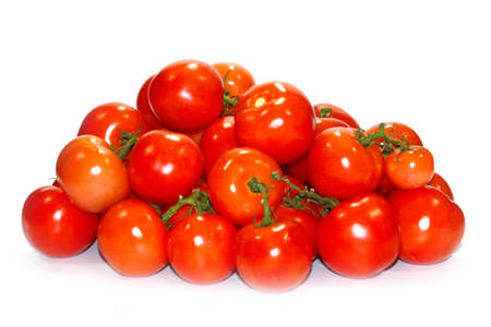 beautiful fresh tomatoes at harvest time