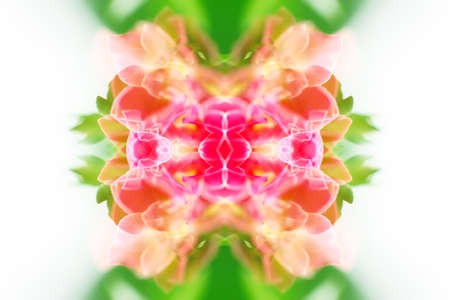 beautiful symmetrical patterns with elements of a kaleidoscope