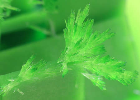 graceful bright green crystals artificially grown from mineral