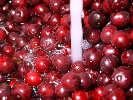 ripe fresh cherry in a stream of clean water Banco de Imagens