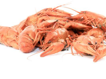 fresh boiled crayfish