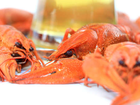 boiled crayfish as a beer snack