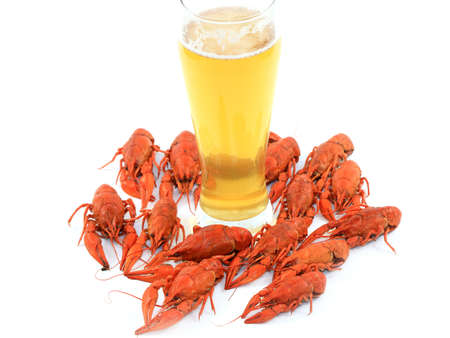 beer and crawfish isolated on white
