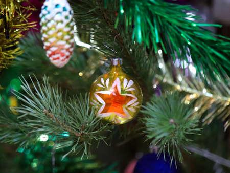 Christmas pine festively