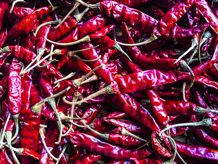 red chilli pepper plant: Dried chili for cooking in Thailand. Stock Photo