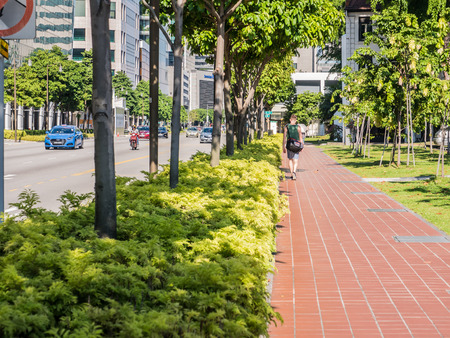 Urban foot path with green trees Stock Photo