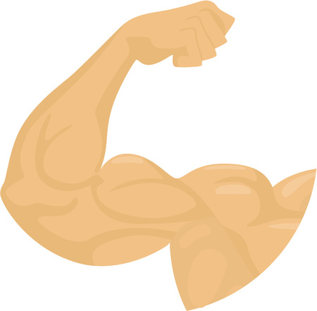 human biceps  isolalted on white Vector