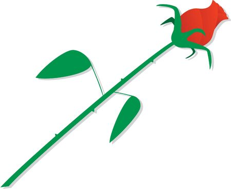 Side view of a perfect red rose Stock Vector - 10271418