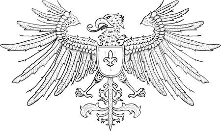 fenix: Eagle with shield isolated on white Illustration