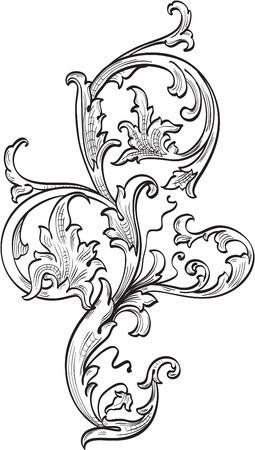 Acanthuce leaf isolated on white Illustration