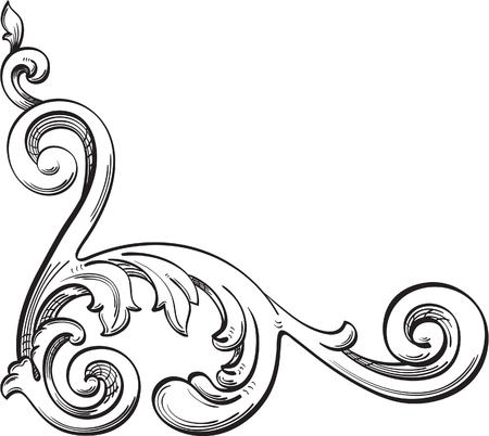 Acanthuse corner is isolated on white Illustration
