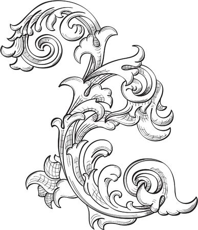 acanto: Flor Acanthuse aislado en blanco
