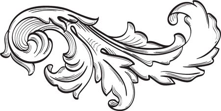 The acanthus scroll nice leaf is on white Çizim