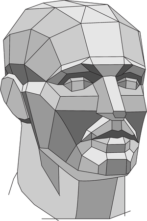 Polygonal head is isolated on white