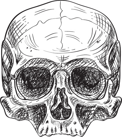 Skull in engraving style isolated on white