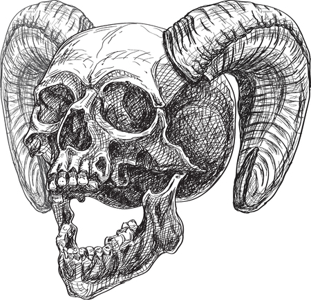 Skull side and horns isolated on white. Can be used for tattoo