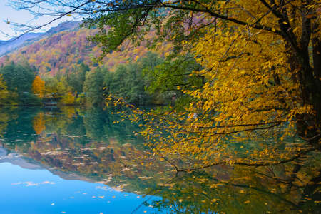 autumn forest reflecting at lake smooth surface Stock Photo