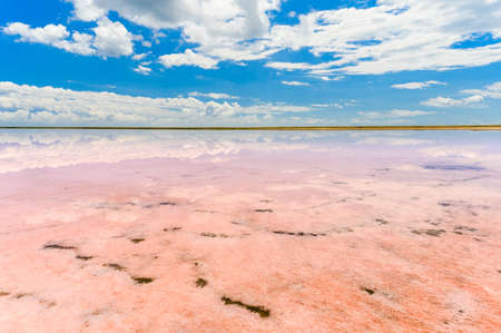 surface of pink lake under the sky with clouds. Landscape on a pink lake at daytime