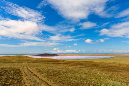Nice view of the pink lake and the sky with clouds. In the foreground is a field with a dirt road Banque d'images