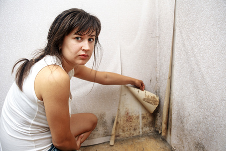 A girl removing Mold fungus without respirator mask