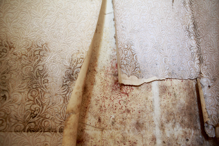 Water damage causing mold growth on the interior walls of a Stock Photo