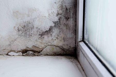 mold in the corner of the window Banco de Imagens - 115313454