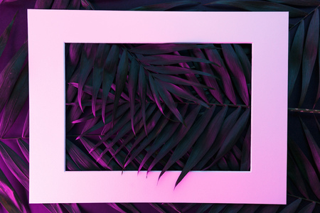 Tropical and palm leaves in vibrant bold gradient holographic neon colors