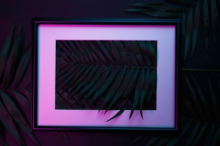 Tropical and palm leaves in vibrant bold gradient holographic neon colors Stock Photo - 119193493