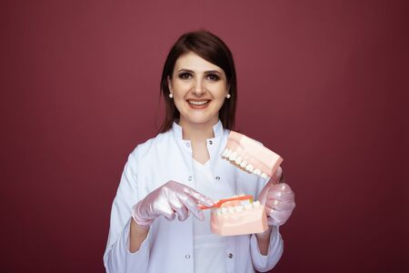 Female dentist with white smile holding jaw and brush showing process of cleaning isolated. Stock Photo
