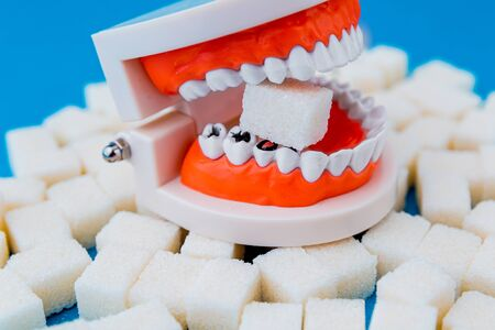 A peace of sugar in the fake jaw with a lot of holes in teeth isolated.