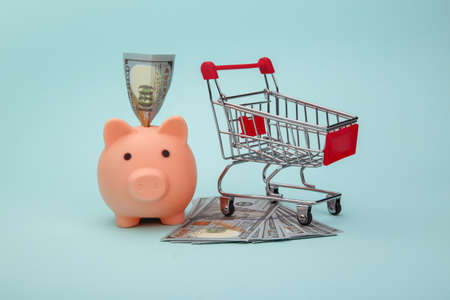 Piggy bank with money banknotes and trolley on blue background