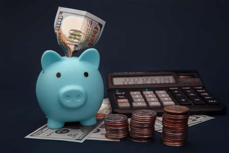 Savings for future investments and for emergency use concept. A blue piggybank, money and calculator on dark blue background