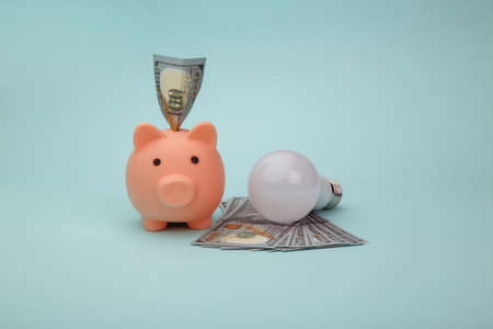 Saving electricity concept. Led light bulb and piggy bank with money banknotes