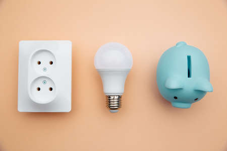 LED light bulb, power socket and blue piggy bank. Power energy economy. Top view