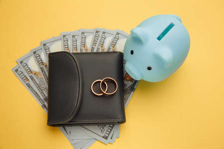 Save money for honeymoon, wedding trip. Blue piggy bank with rings on wallet with money Standard-Bild