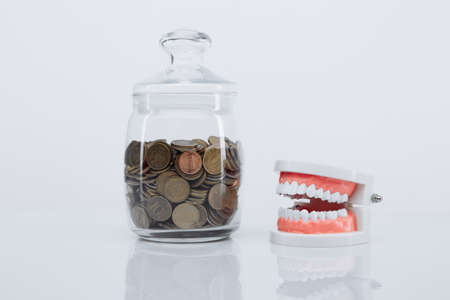 Model of jaw and glass bank with coins on a glass table. Expensive dentists services concept