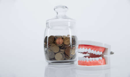 Model of jaw and bank with coins. Money and dentist concept Stok Fotoğraf