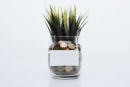 Grass growing out of coins in a glass bank. Savings concept