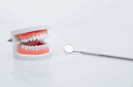 Jaw model and dentist tool. Teeth treatment concept