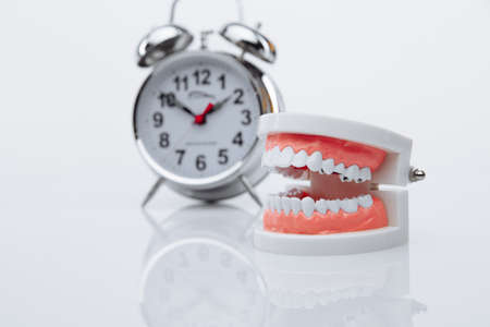 Jaw model and alarm clock close-up. Time to visit a dentist Stok Fotoğraf