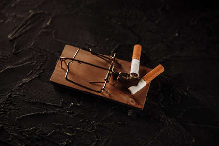 Two cigarettes on a mouse trap. Dangerous habbit concept