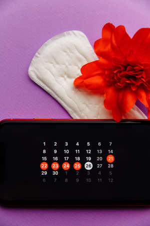 Menstruation app calendar in smartphone with sanitary pad, pills and red flower on a lilac background. Woman critical days and hygiene protection concept. Vertical image