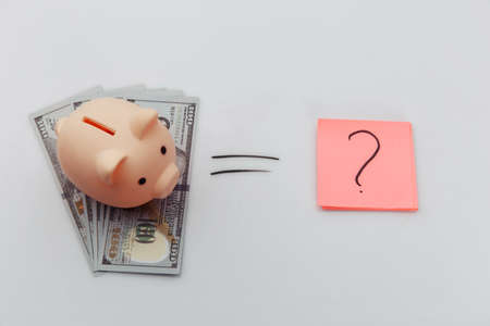 Question mark and dollar banknotes with piggy bank