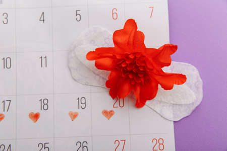 Females menstrual cycle and hygiene concept. Menstrual calendar with sanitary pad and red flower 版權商用圖片 - 162029218
