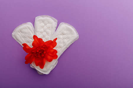 Females menstrual cycle concept. Sanitary pads with red flower