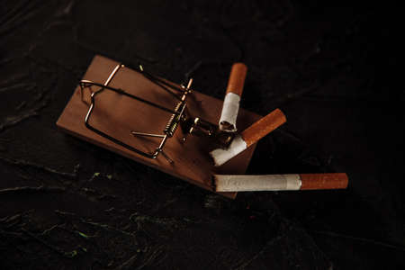 Three cigarettes on a mouse trap. Top view. Toxic addiction concept