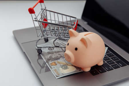 Shopping cart and pink piggy bank with laptop on the desk, online shopping concept 版權商用圖片